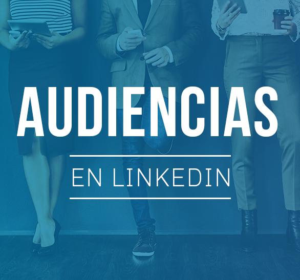 Audiencias en LinkedIn